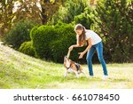 girl plays with a dog in the... | Shutterstock . vector #661078450