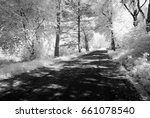 country gravel road in forest... | Shutterstock . vector #661078540