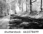 country gravel road in forest... | Shutterstock . vector #661078699