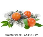 tangerine with fir twig... | Shutterstock . vector #66111319
