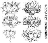 hand drawn lotus flower.isolate ... | Shutterstock .eps vector #661147078