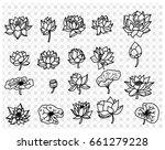 hand drawn romantic beautiful... | Shutterstock .eps vector #661279228