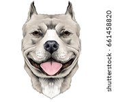 dog breeds the american pit... | Shutterstock .eps vector #661458820