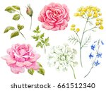 watercolor floral set  pink... | Shutterstock . vector #661512340