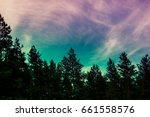 spruce trees and sky with...   Shutterstock . vector #661558576