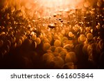 beige glitter lights background.... | Shutterstock . vector #661605844
