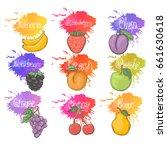 fruit and berry set... | Shutterstock . vector #661630618