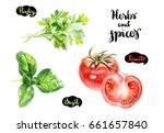 herbs and spices kitchen... | Shutterstock . vector #661657840