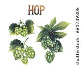 watercolor hops on the branch.... | Shutterstock . vector #661739308