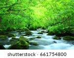 oirase stream of fresh green. | Shutterstock . vector #661754800