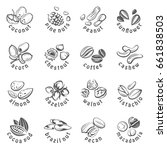 collection of monochrome nuts... | Shutterstock .eps vector #661838503