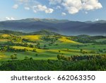 spring forest and meadows... | Shutterstock . vector #662063350