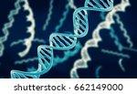 dna chain   3d illustration | Shutterstock . vector #662149000