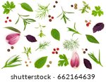 fresh spices and herbs isolated ... | Shutterstock . vector #662164639