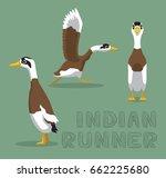 duck indian runner cartoon...   Shutterstock .eps vector #662225680