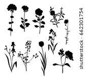 vector silhouette flowers ... | Shutterstock .eps vector #662301754
