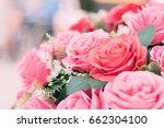 a close up of beautiful rose...   Shutterstock . vector #662304100