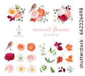 peachy rose  white and burgundy ... | Shutterstock .eps vector #662326498