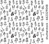 herbal hand drawn seamless... | Shutterstock .eps vector #662329048