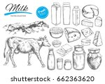 dairy products vector... | Shutterstock .eps vector #662363620