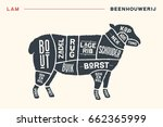 meat cuts. poster butcher... | Shutterstock .eps vector #662365999