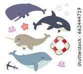 vector blue whale  sperm whale  ... | Shutterstock .eps vector #662444719