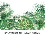 tropical palm leaves  monstera... | Shutterstock .eps vector #662478523