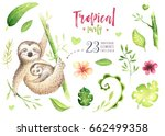 baby animals sloth nursery... | Shutterstock . vector #662499358