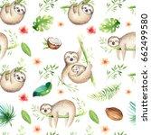 Baby Animals Sloth Nursery...