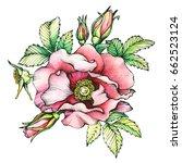 graphic the branch flowering... | Shutterstock . vector #662523124