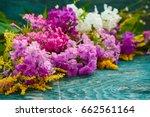 bouquet of fresh summer flowers ... | Shutterstock . vector #662561164