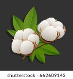 realistic cotton branch on... | Shutterstock .eps vector #662609143