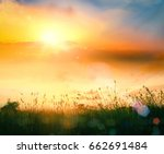 early morning concept  meadow... | Shutterstock . vector #662691484
