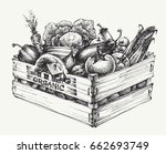 wooden crate full of organic... | Shutterstock .eps vector #662693749