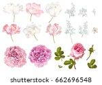 vector flower elements set...   Shutterstock .eps vector #662696548