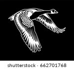 Vector   Canadian Goose