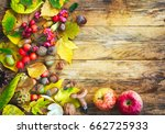 autumn background with crop of... | Shutterstock . vector #662725933