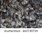 Natural Pattern Of Hexagonal...
