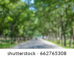 blurred of tree tunnel at sunny ... | Shutterstock . vector #662765308