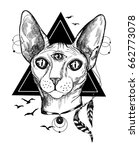 sphinx cat with piercing and... | Shutterstock .eps vector #662773078