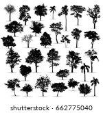 black tree silhouettes on white ... | Shutterstock .eps vector #662775040
