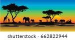 colorful africa sunrise | Shutterstock .eps vector #662822944