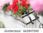 flower box on white wooden... | Shutterstock . vector #662847040