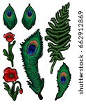 fern  feather peacock and poppy ... | Shutterstock .eps vector #662912869