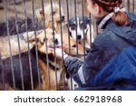 Small photo of Girl volunteer in the nursery for dogs. Shelter for stray dogs.