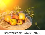 straw hat full of apples. a... | Shutterstock . vector #662922820