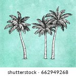 hand drawn vector illustration... | Shutterstock .eps vector #662949268