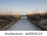 path to the beach. sandy... | Shutterstock . vector #663043114