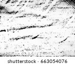 black and white vintage effect... | Shutterstock . vector #663054076