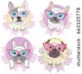 bulldog with glasses  vector ... | Shutterstock .eps vector #663105778